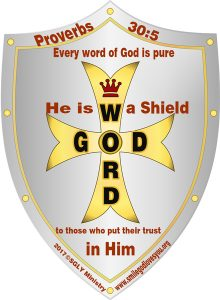 Proverbs 30:5-Shield