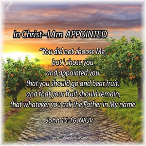 Appointed- John 15:16