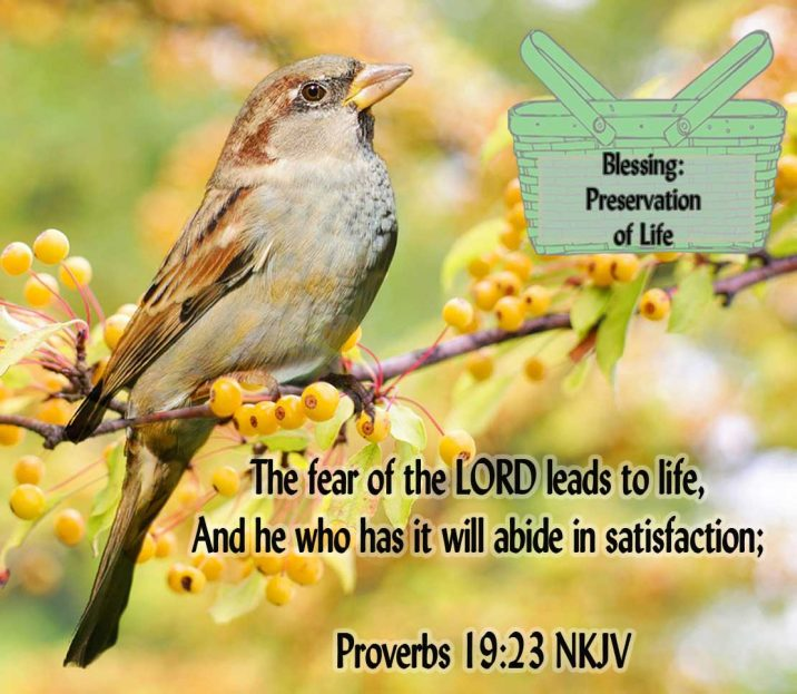 Blessing-24-Proverbs-19.23