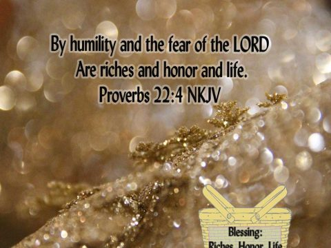 Blessing-28-Proverbs-22.4