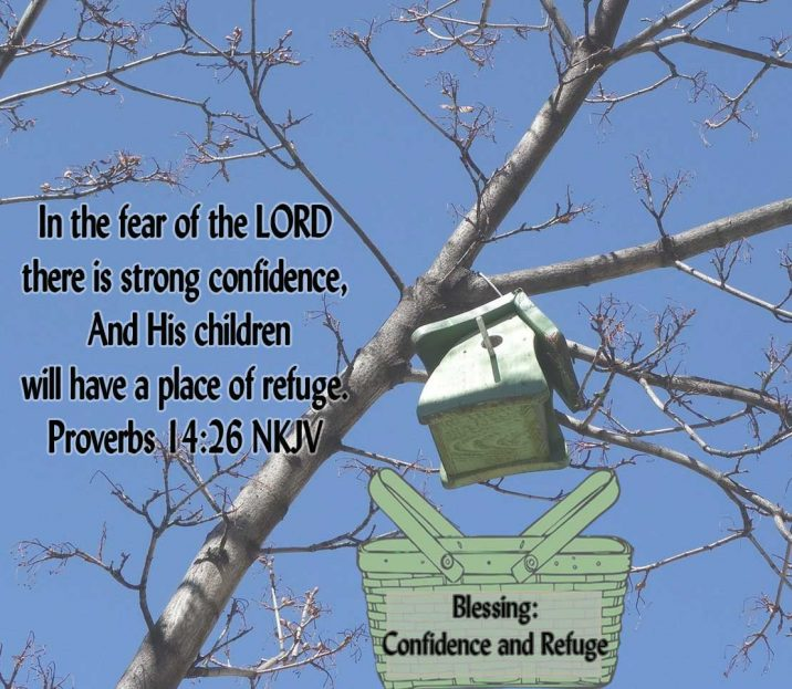 Blessing-9-Proverbs-14.6