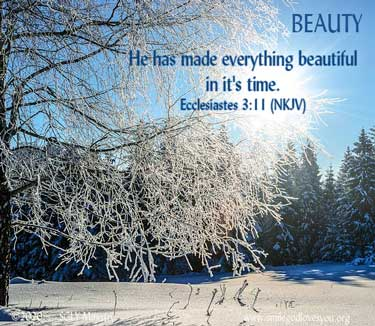 Beauty--Eccl.3.11